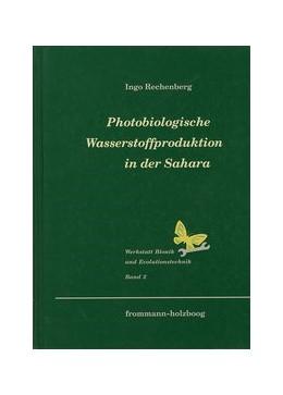 Abbildung von Rechenberg | Photobiologische Wasserstoffproduktion in der Sahara | 1994 | 2