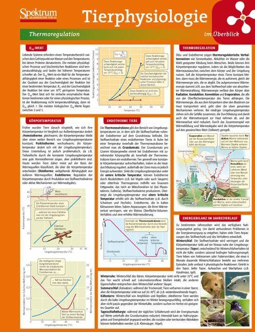 Abbildung von Lerntafel: Tierphysiologie im Überblick | 2009