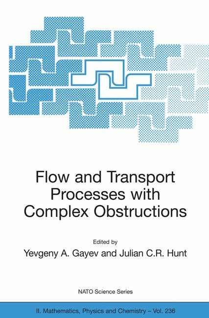 Abbildung von Gayev / Hunt | Flow and Transport Processes with Complex Obstructions | 2006