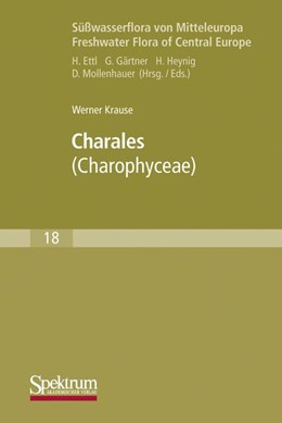 Abbildung von Krause | Süßwasserflora von Mitteleuropa, Bd. 18: Charales | 1997 | Charophyceae | 18