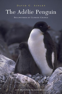Abbildung von Ainley   The Adélie Penguin   2002
