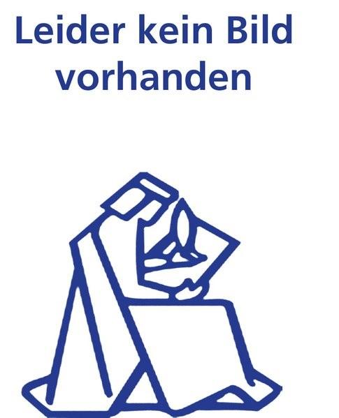 Abbildung von Abegglen | Wissenszurechnung bei der juristischen Person und im Konzern, bei Banken und Versicherungen | 2004
