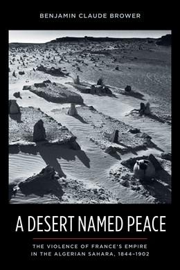 Abbildung von Brower | A Desert Named Peace | 2009 | The Violence of France's Empir...
