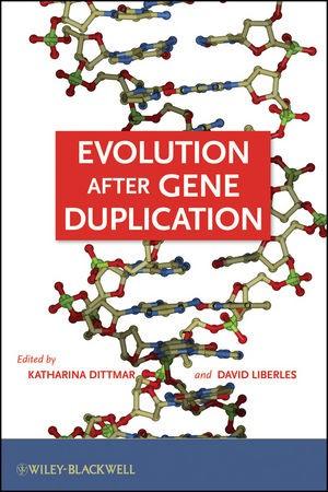 Abbildung von Dittmar / Liberles   Evolution after Gene Duplication   2010