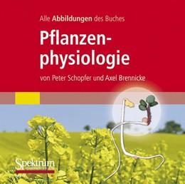 Abbildung von Schopfer / Brennicke   Alle Grafiken des Lehrbuchs Pflanzenphysiologie   2010