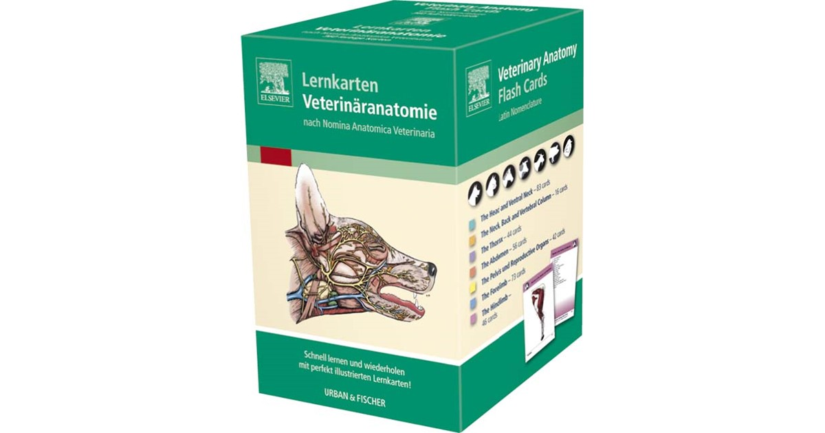 Ziemlich Veterinary Anatomy And Physiology Flash Cards Galerie ...