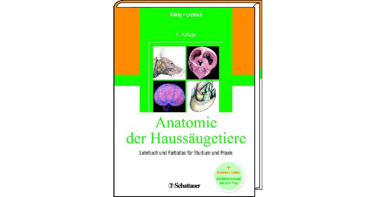 Anatomie der Haussäugetiere | König / Liebich | 5., überarb. u. erw ...