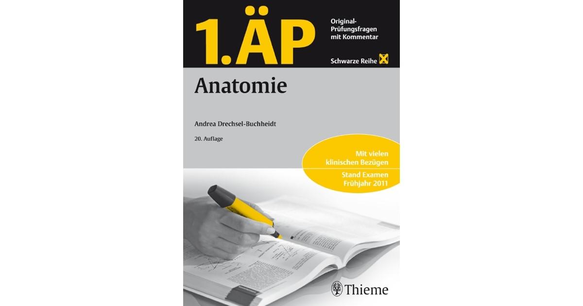 Schön Menschliche Anatomie Testfragen Bilder - Anatomie Ideen ...