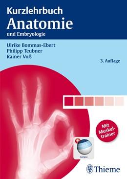 Abbildung von Bommas-Ebert / Teubner / Voß | Kurzlehrbuch Anatomie | 3., aktual. u. erw. Aufl. | 2011 | und Embryologie