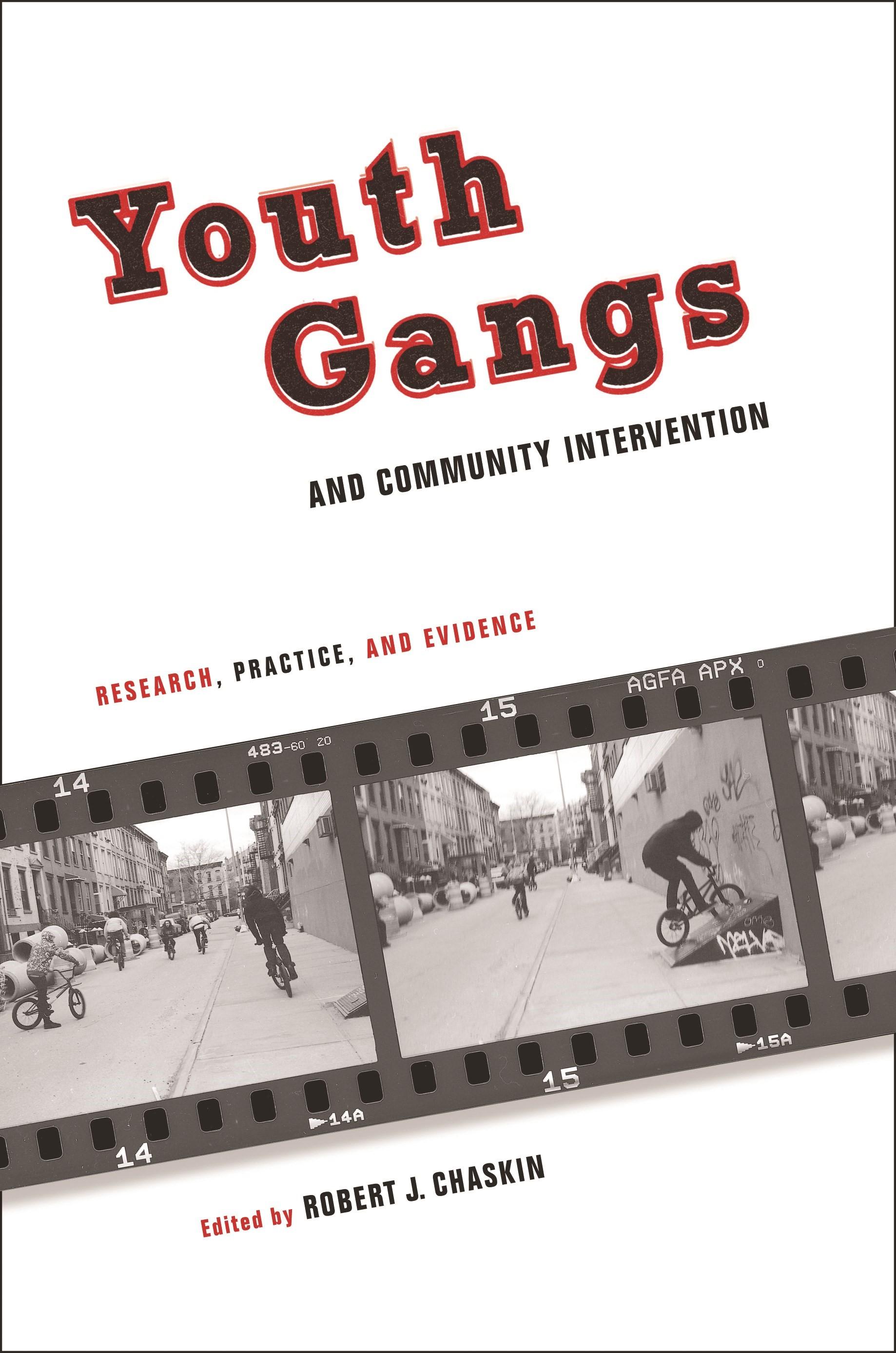 Abbildung von Chaskin | Youth Gangs and Community Intervention | 2010