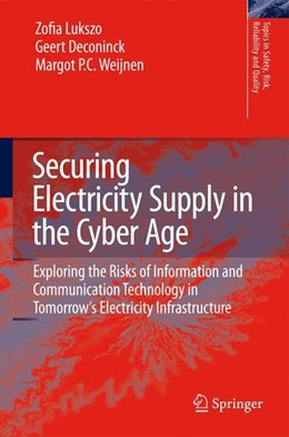 Abbildung von Securing Electricity Supply in the Cyber Age | 2010 | 2009