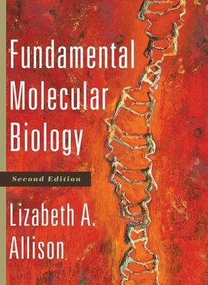 Abbildung von Allison | Fundamental Molecular Biology | 2011