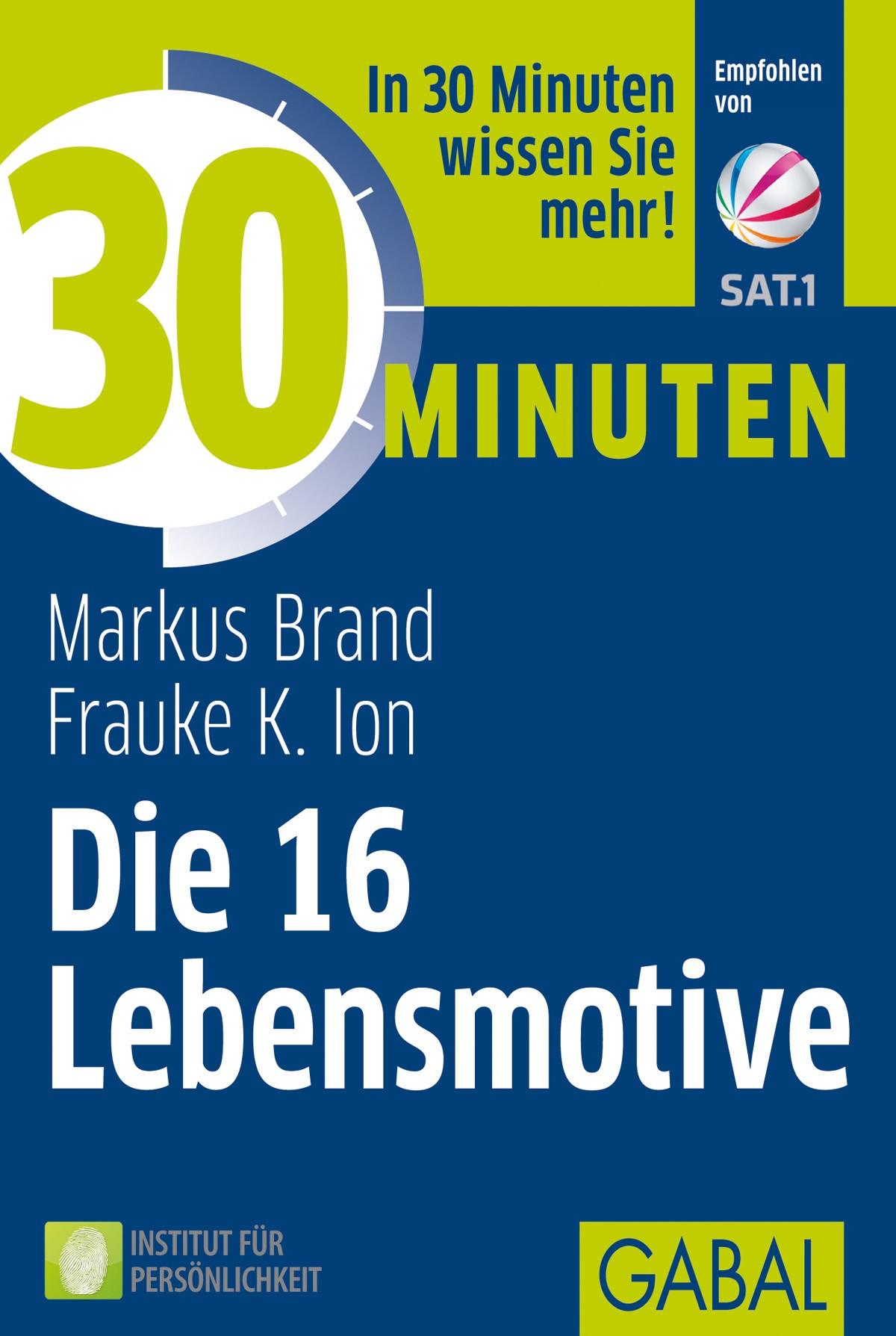 30 Minuten Die 16 Lebensmotive | Brand / Ion | 8., ergänzte und erweiterte Auflage, 2013 | Buch (Cover)