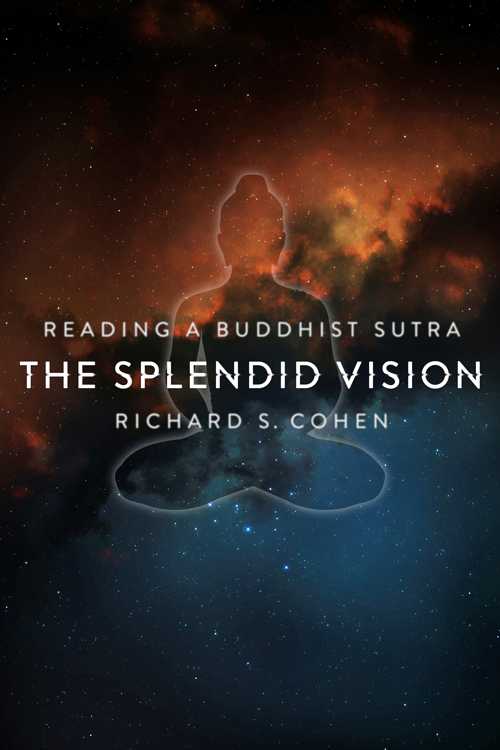 The Splendid Vision | Cohen, 2012 | Buch (Cover)