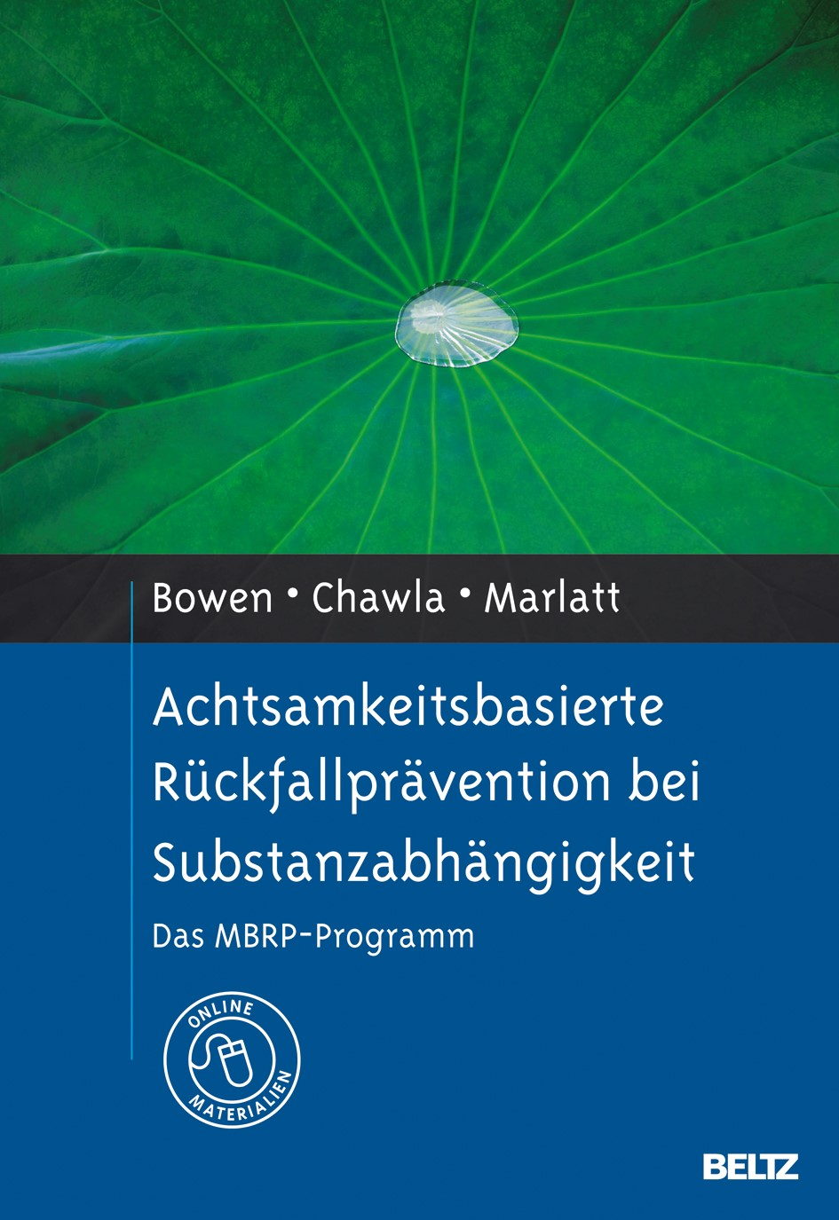 Achtsamkeitsbasierte Rückfallprävention bei Substanzabhängigkeit | Bowen / Chawla / Marlatt, 2012 | Buch (Cover)