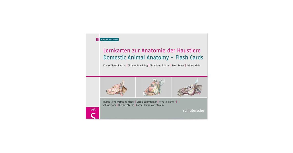 Lernkarten zur Anatomie der Haustiere | Budras, 2012 | beck-shop.de